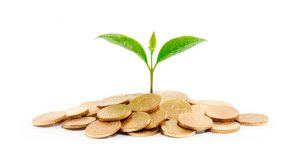 5 consejos para postular a fondos para Pymes